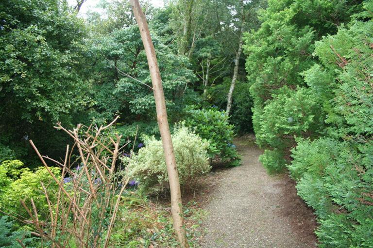 four-ashes-garden-walks-924